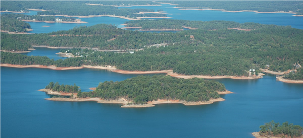 aeriel lake martin alabama