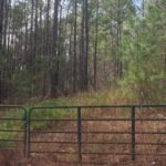 lot 18 highway 49 south